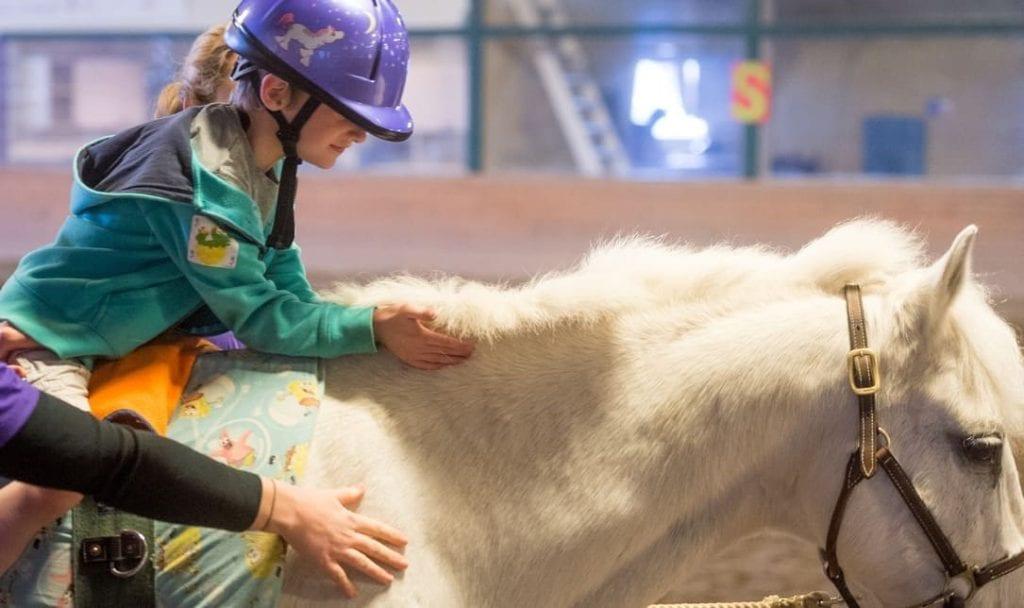 Terapia cu cai - beneficii